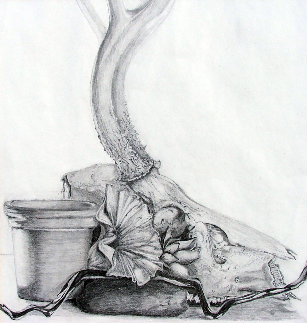 untitled (still life), graphite, 2002