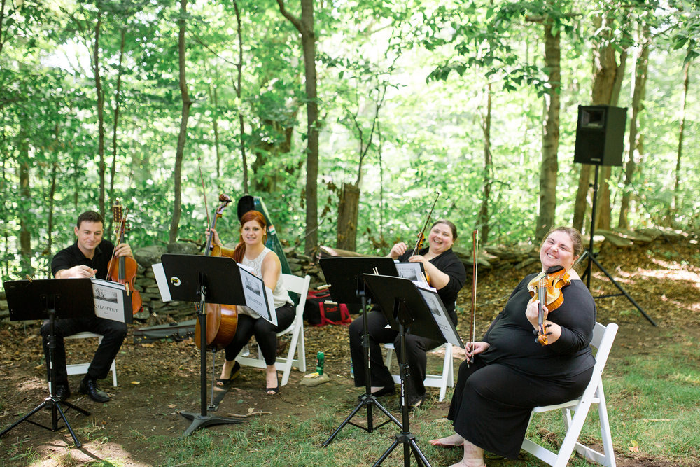 AVIVA Strings:   Elegant Live   Strings   For Weddings, Events, &   Special Occasions. Serving   Northeastern Pennsylvania, Wilkes-Barre, Scranton, the Poconos, the Lehigh Valley, Philadelphia and beyond!