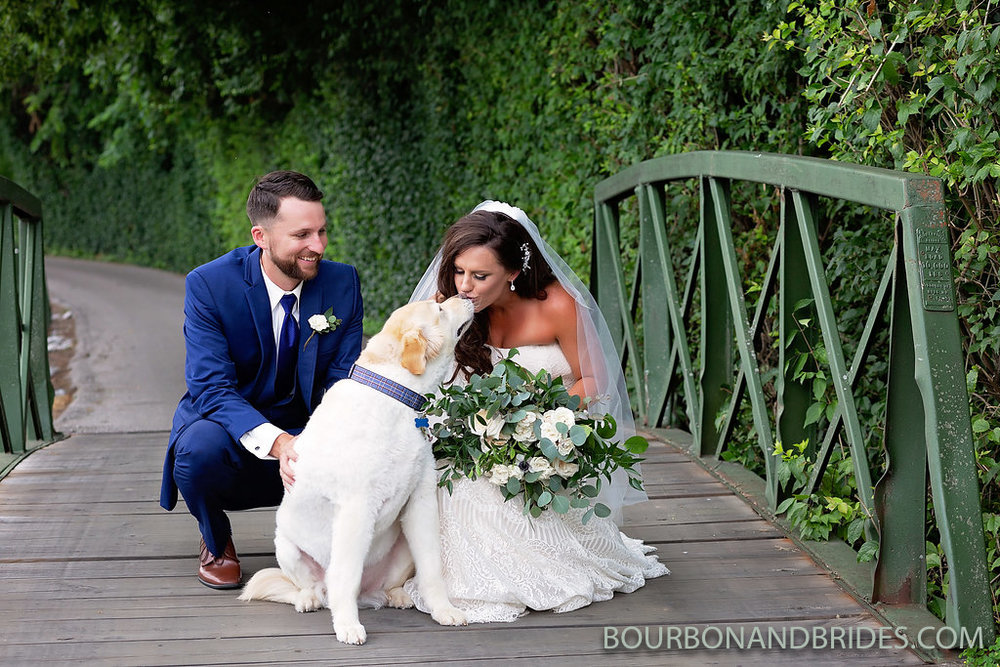 kentucky-wedding-dog.jpg
