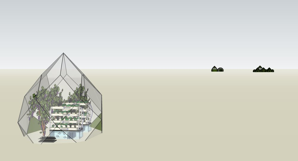 Growdome Township visualisation copy.jpg