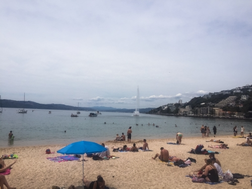 Oriental Bay; it was a hot day so the beach was packed. Be sure to stop for an ice cream, there's lots of tasty options around!
