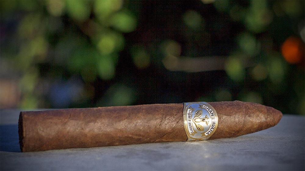 Cigar Torpedo Maduro