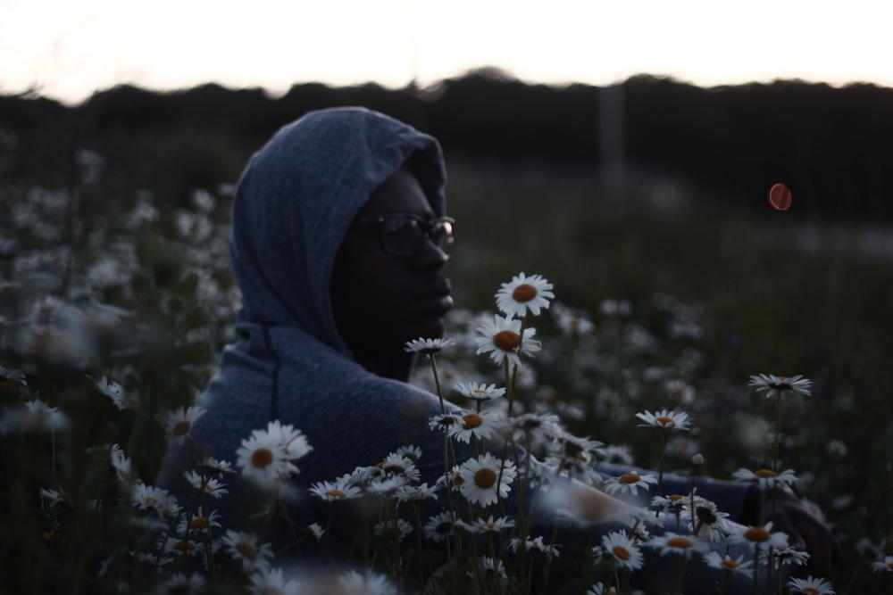 flowersinthehood.JPG
