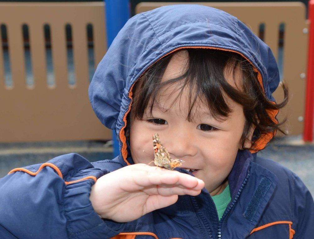 Bigyan admiring a butterfly