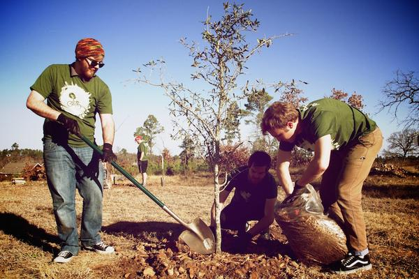 RETREETers planting trees