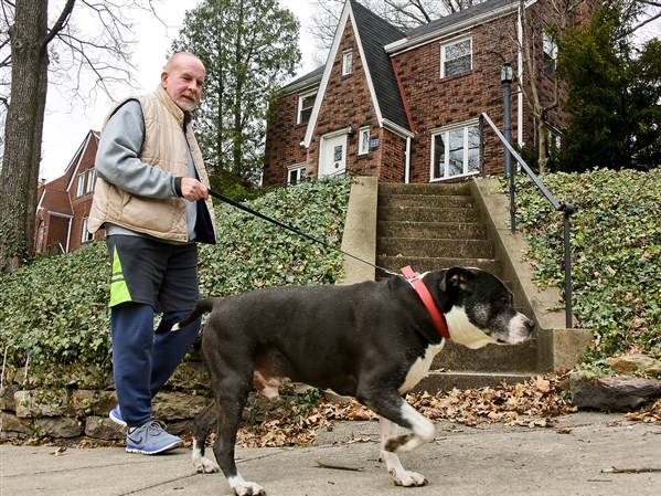 McMullin and Roscoe out on their daily walk  (photo credit: Pittsburgh Post-Gazette)