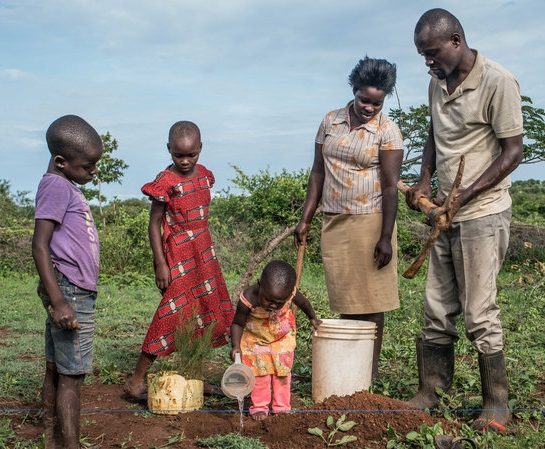 Otieno and his family planting cypress saplings  (photo credit: Nichole Sobecki for NPR)
