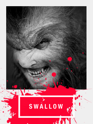 MTF Home_Swallow_3_450x600.png