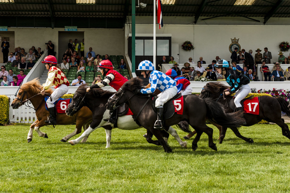 Shetland Pony Grand National