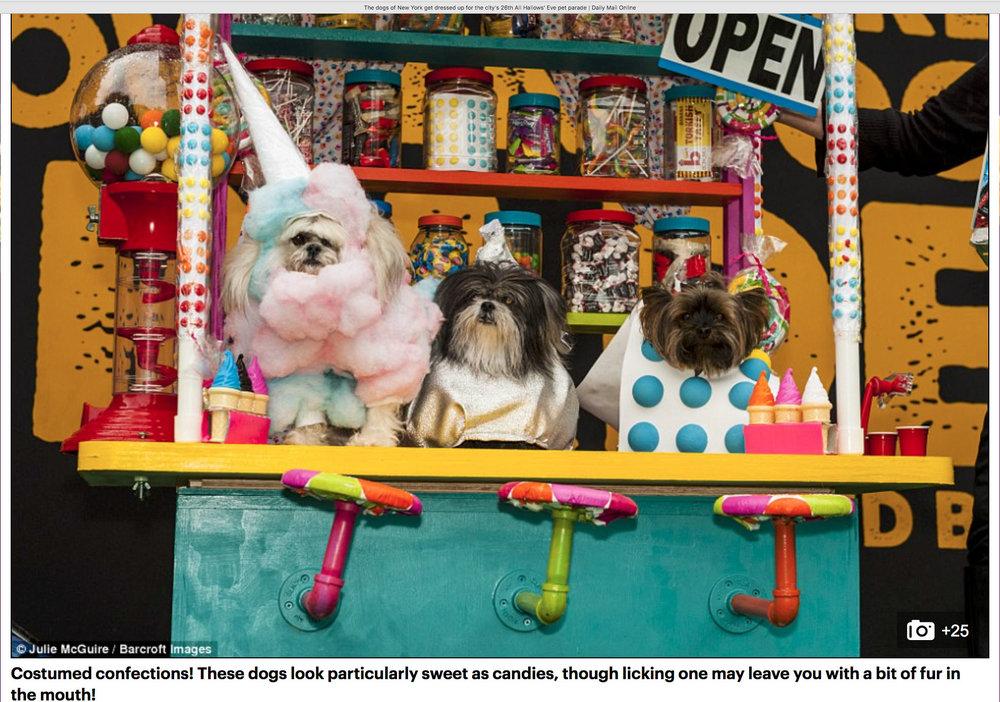 Candy Shop Girls