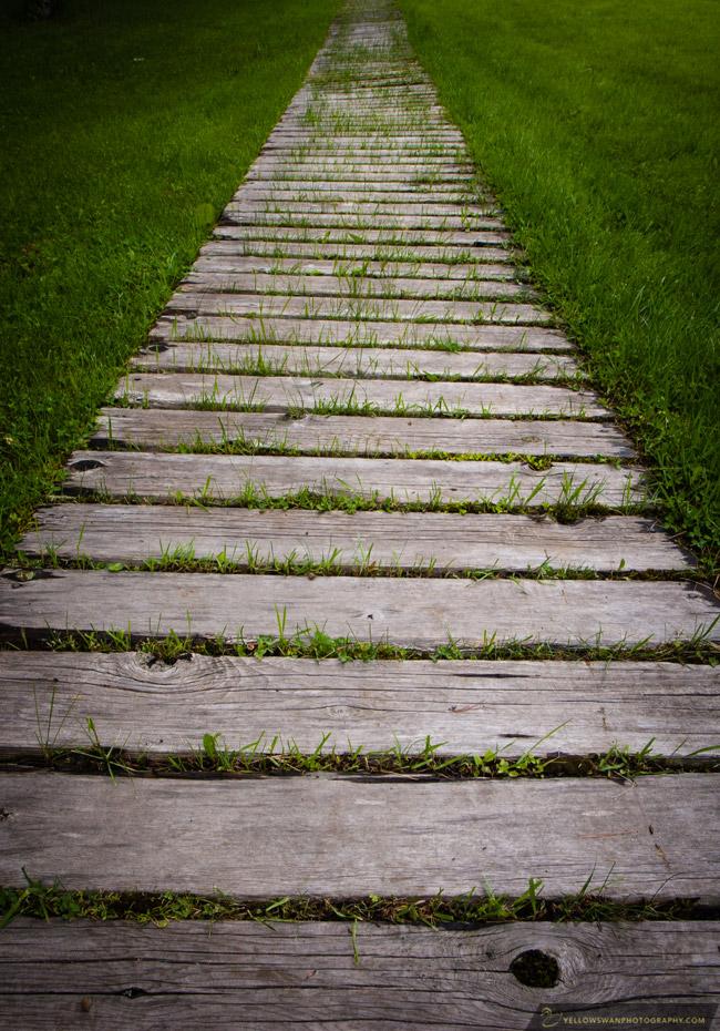 Voyageurs-resort-walkway.jpg