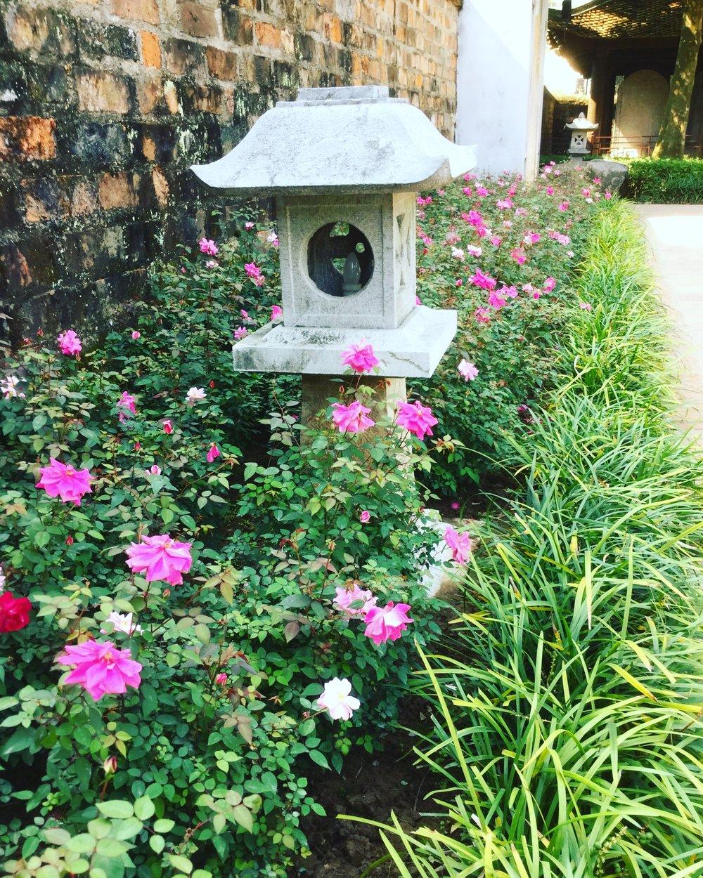 flowers, hanoi