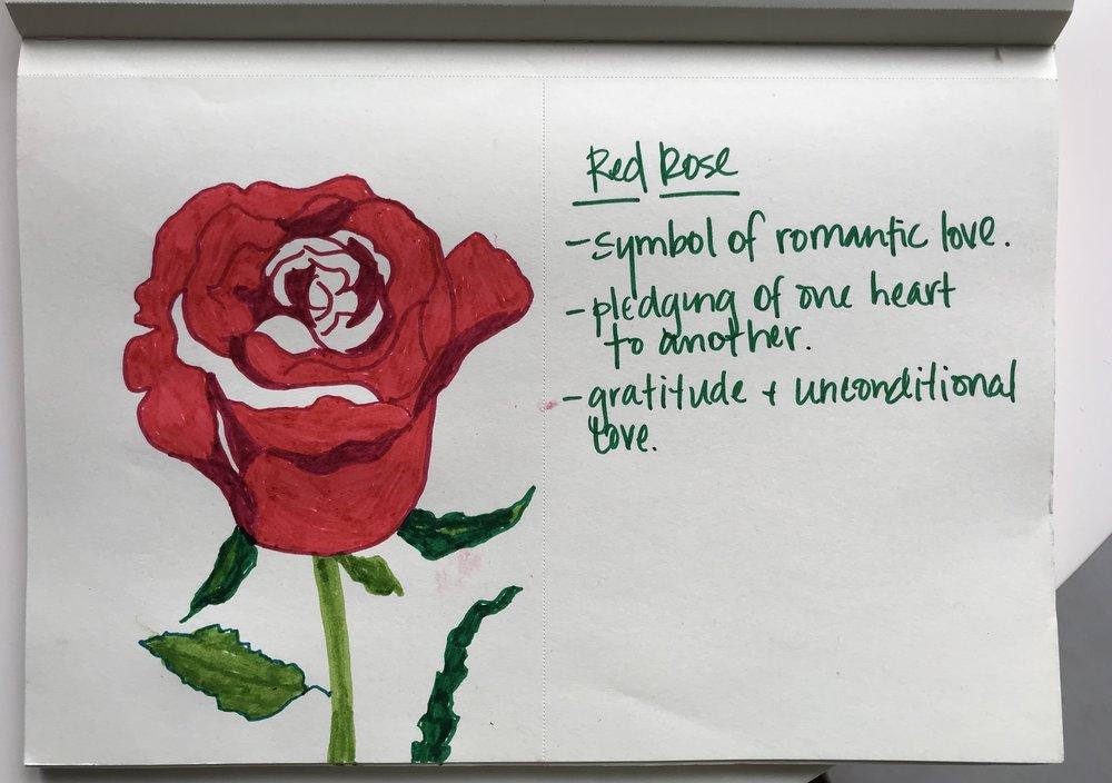 rose dream.jpg