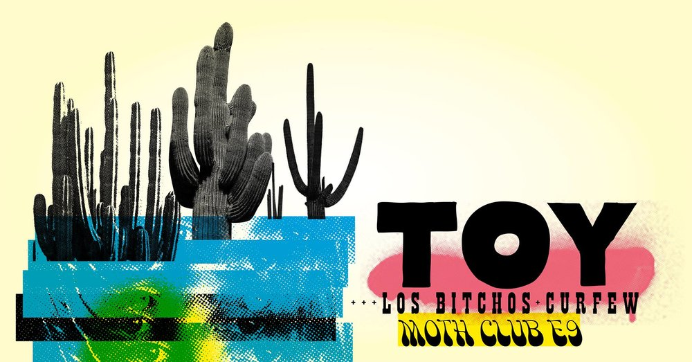 Toy Moth.jpg