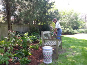 Mulching the garden in spring.