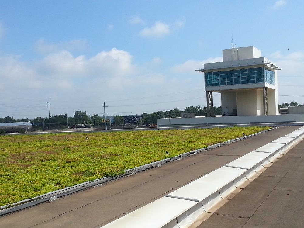 Sedum plants grow in a four-layer, vegetated mat, not soil.