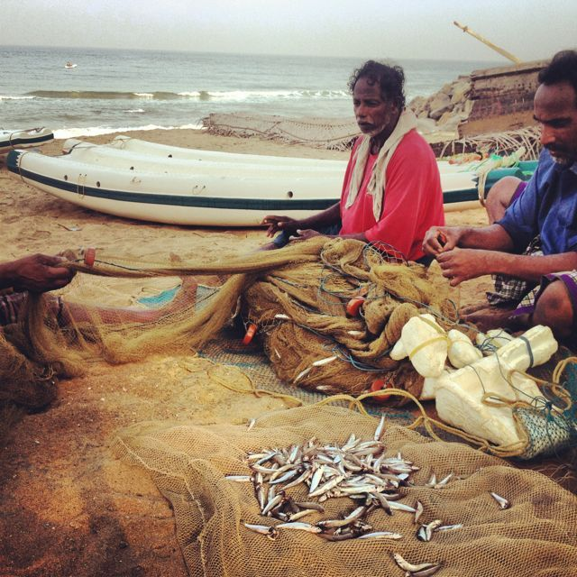 The local catches in Varkala were frighteningly insignificant. Most fishermen I spoke with said catches had been even lower than the last few years. With fish stocks plummeting worldwide, small fishing villages like this one will be the first and hardest impacted. A contributing factor into my recent turn to eating vegan.