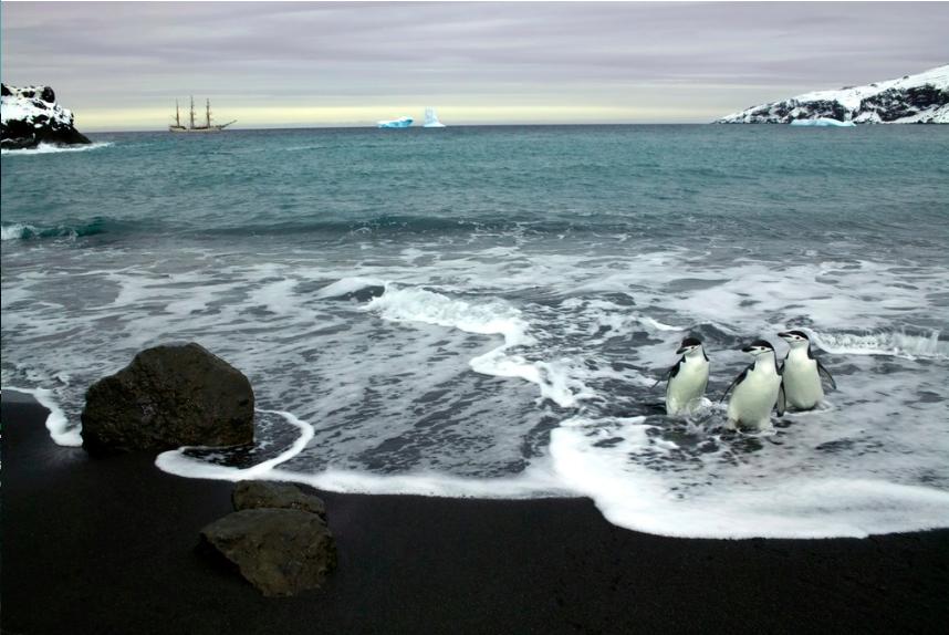 antarctica 3c.png