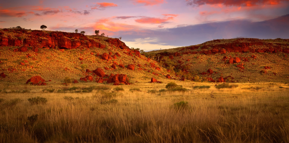 Dotted with acacia trees, the striking landscape of Pilbara's Outback region at dusk. // © Dan Proud