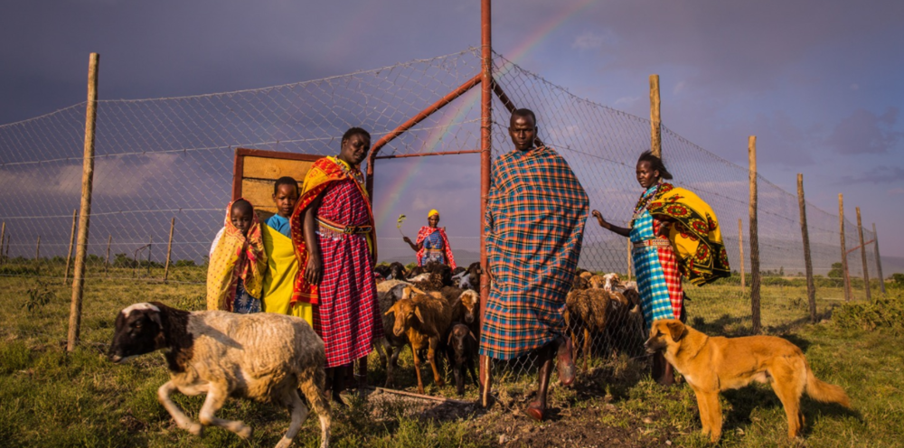 Members of Pilot's family stand at the gate of his newly constructed predator-proof 'boma,' just a few miles from the edge of the Masai Mara National Reserve.
