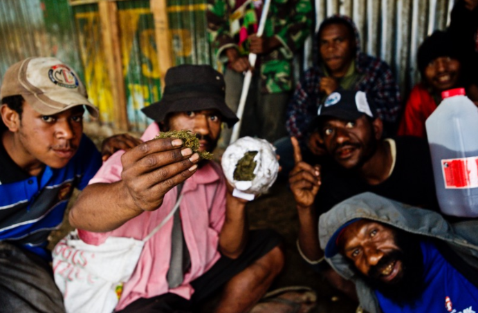Believed to have been introduced by Australian and American expatriates during the 60s/70s, marijuana is a lucrative crop in Papua New Guinea. It is grown largely in the mountainous highlands, particularly in the drier areas where it is said to grow a more powerful product.