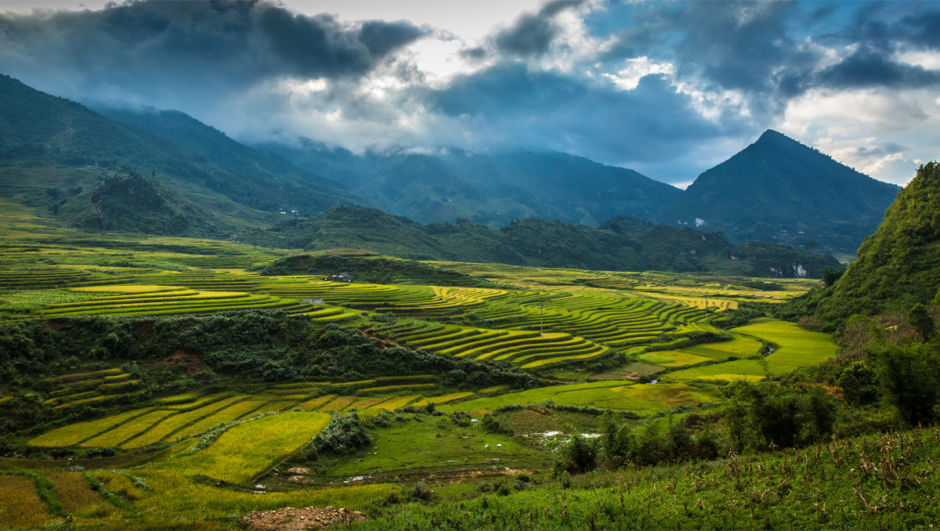 The village of Ta Phin is home for many Red Dao families. Just a short trek from Sapa, many visitors can hike through the rice paddies en route to this traditional ethnic minority village.