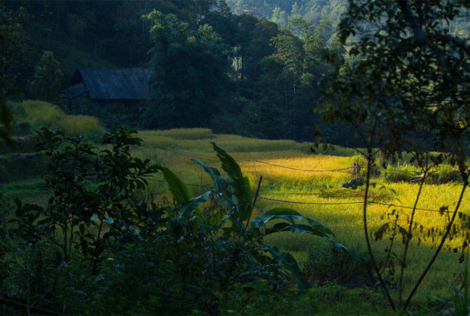 Life in these villages has changed with an increase in tourism; however most families still live in traditional homes, often overlooking the rice paddies which sustain them throughout the year.