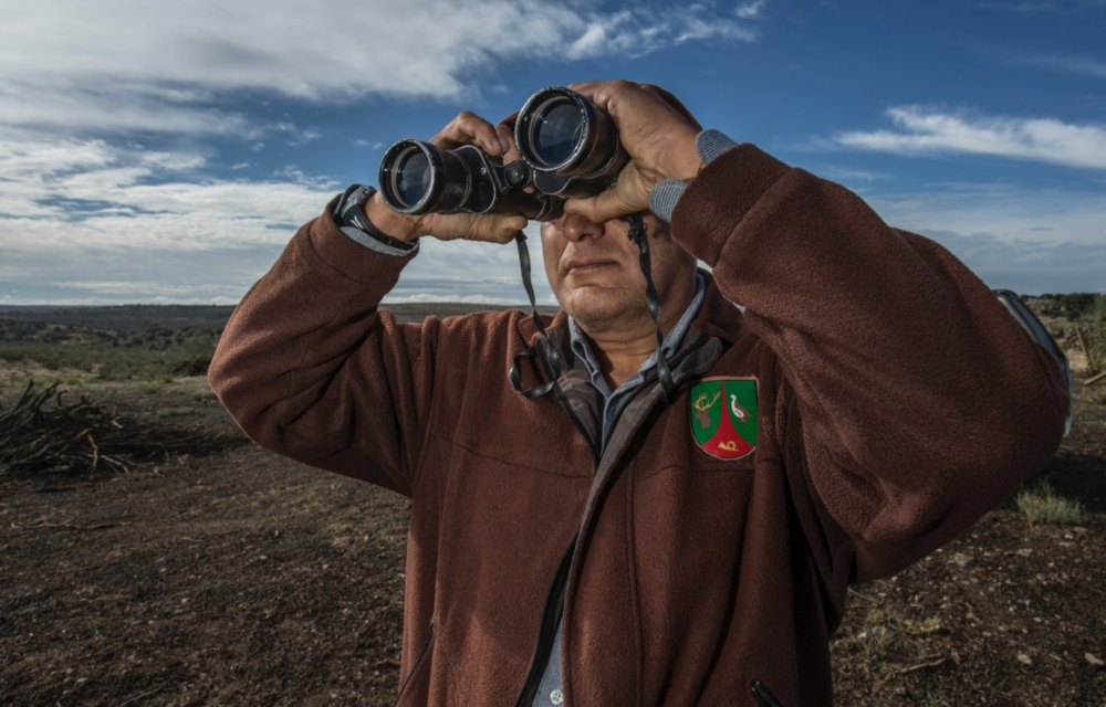 Pedro, a game ranger on a private estate scans the scrubland for signs of lynx.