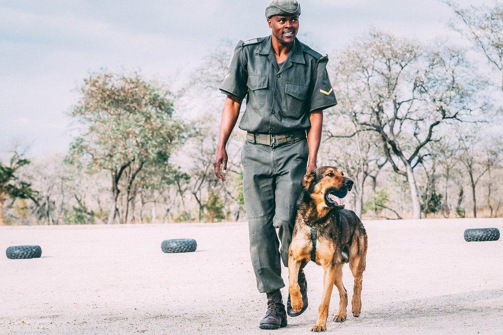 K9 Unit at the South African Wildlife College | Photo by Kirstin Scholtz @kirstinscholtz