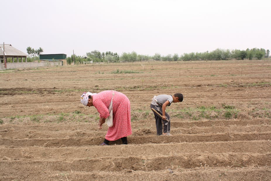 Kyrgyz women have gradually replaced men in various tasks, at home but also as migrant labourers.Asel Murzakolova,Author provided