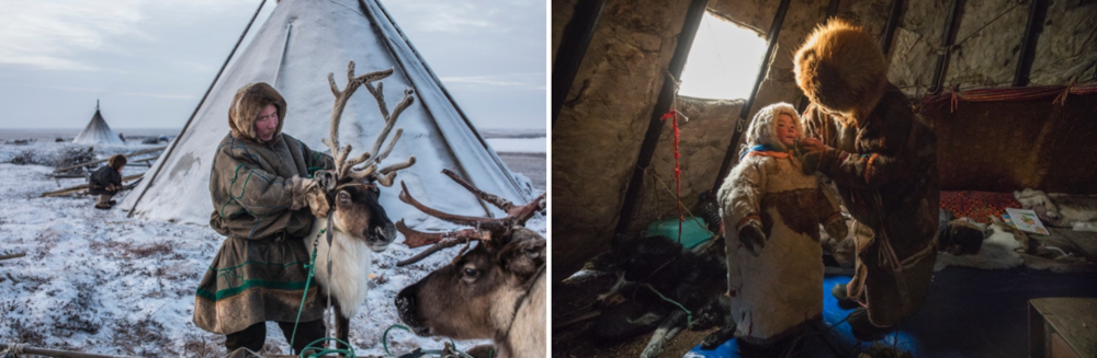 Each member of a traditional Nenets family has specific responsibilities that together are essential to their collective survival on the tundra. While, Leo tends to the reindeer herd out on the tundra, Lena cares for their four year old daughter, Christina.