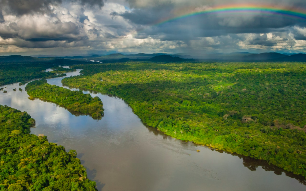 The densely knit Amazon rainforest; home to countless indigenous peoples and the once-mighty Xingú River, now forever tamed.    Brazil