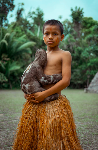 Deforestation threatens indigenous tribes living in the Peruvian jungle. Photo by Alexander Paul on Unsplash