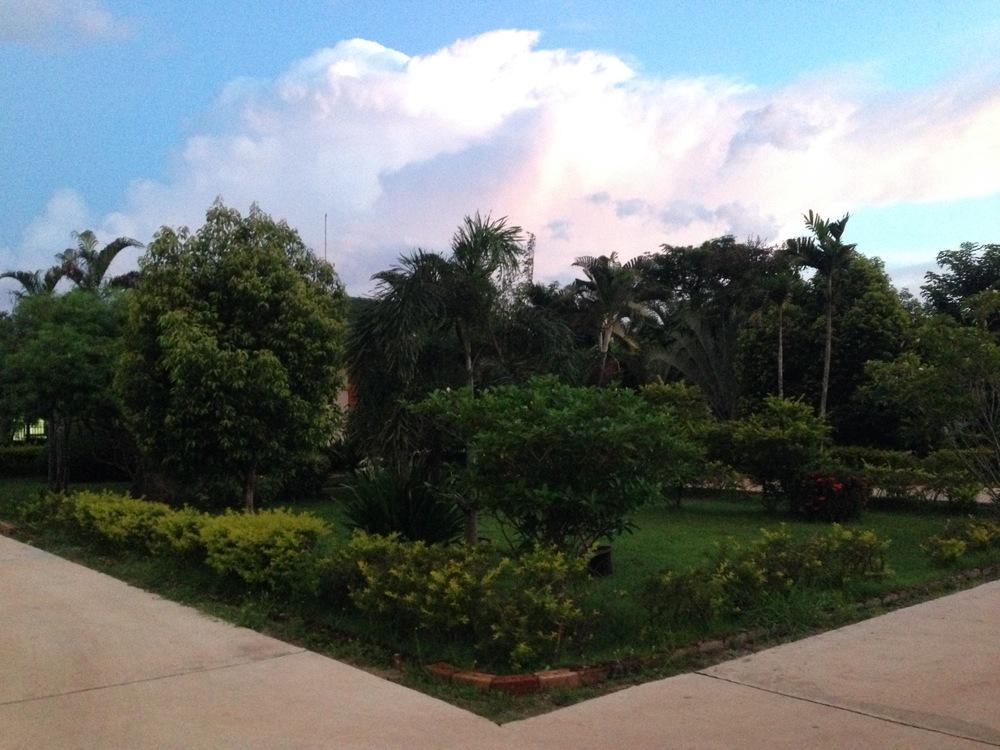 The Garden1.jpg