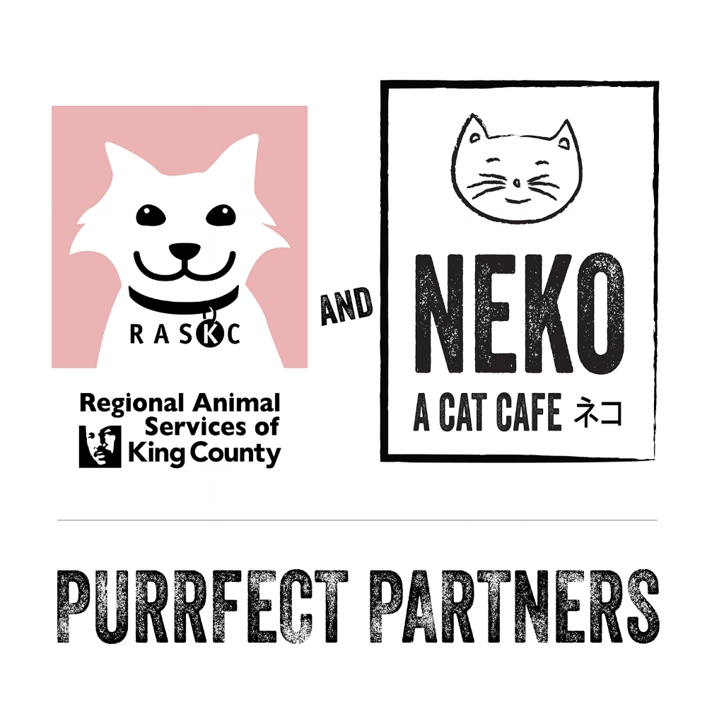 Purrfect Partners_The Final_9_21_17-01_small 5_.jpg