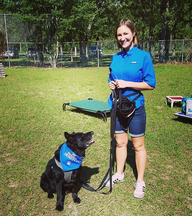 Mr. Bea (aka Beast) and I were honored to fill in as the Demo Team for Jax Pawsitive Training Inc. Saturday morning class. Bea is over 12 years and still killing it! No Force, No Fear, No Pain is acceptable in dog training. Thanks for the pic Bret! @the.other.lunatic  @poochpal @gohealthypaws  #dogsofinstagram #dogtraining #forcefreetraining #labmix #bordercolliemix #senior_dog