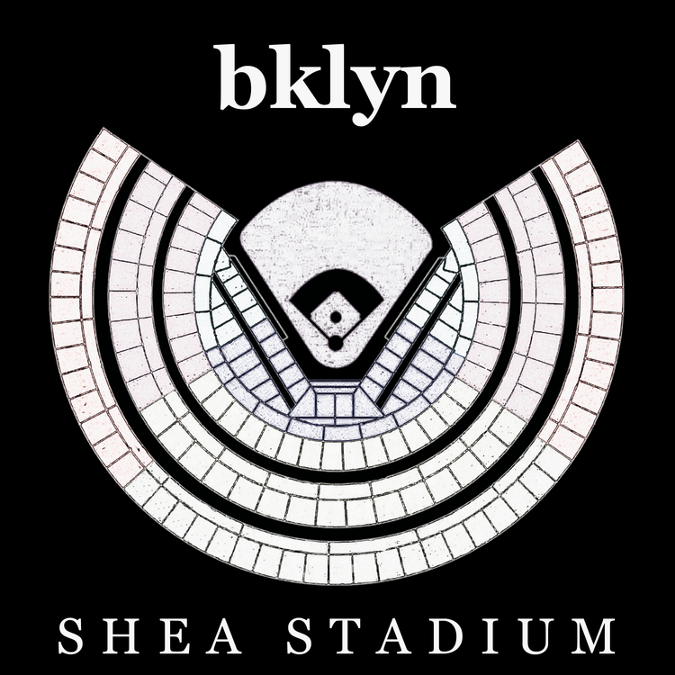 Shea Stadium Records