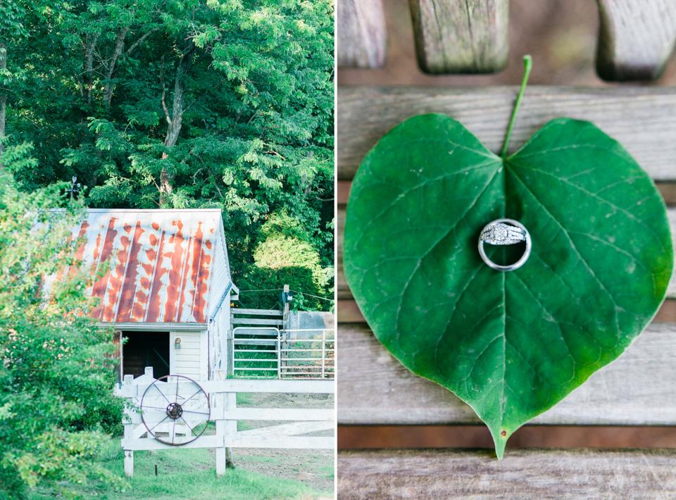 dewberry farm-25.jpg