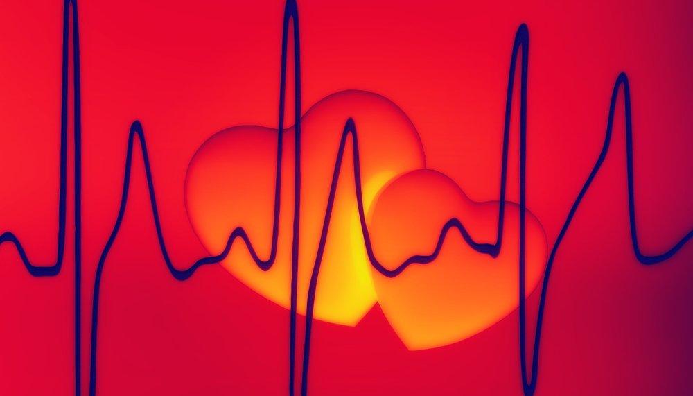 heart-799138_1920.jpg