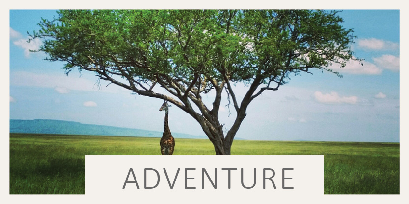 Adventure Travel by Transatlantic