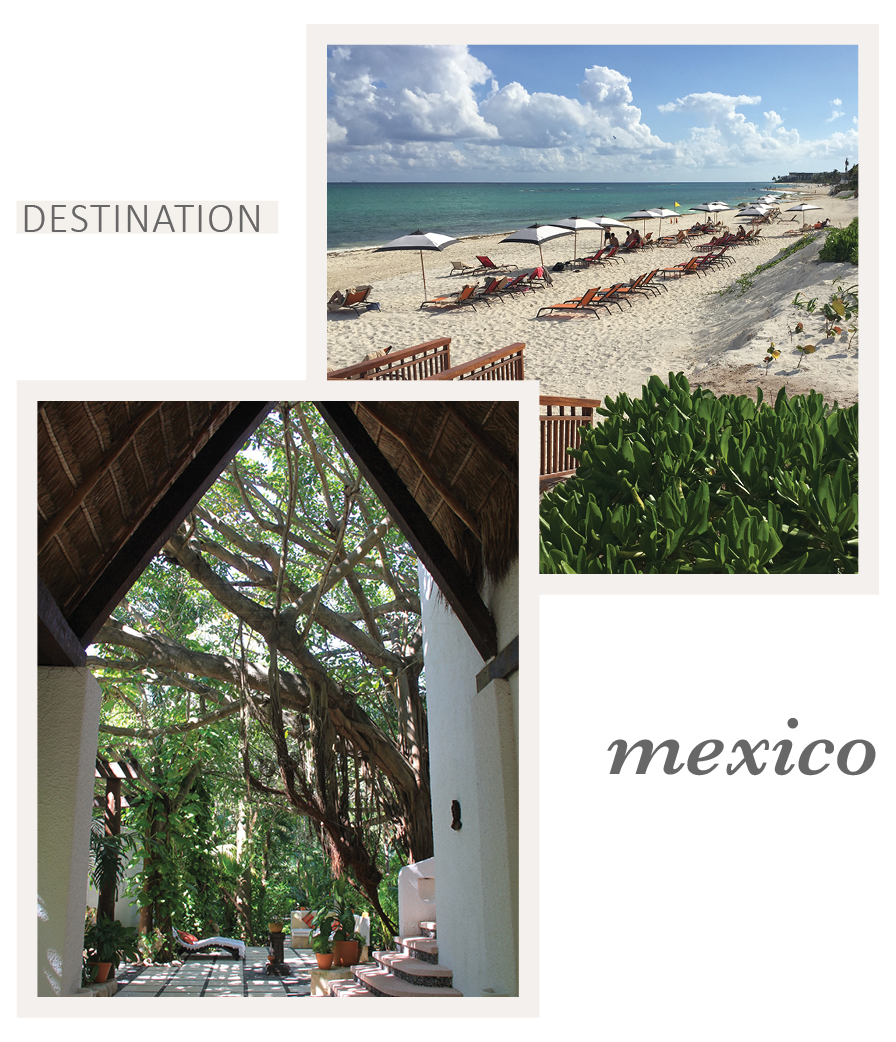 Travel to Mexico with Eileen Schlichting of Transatlantic Travel.