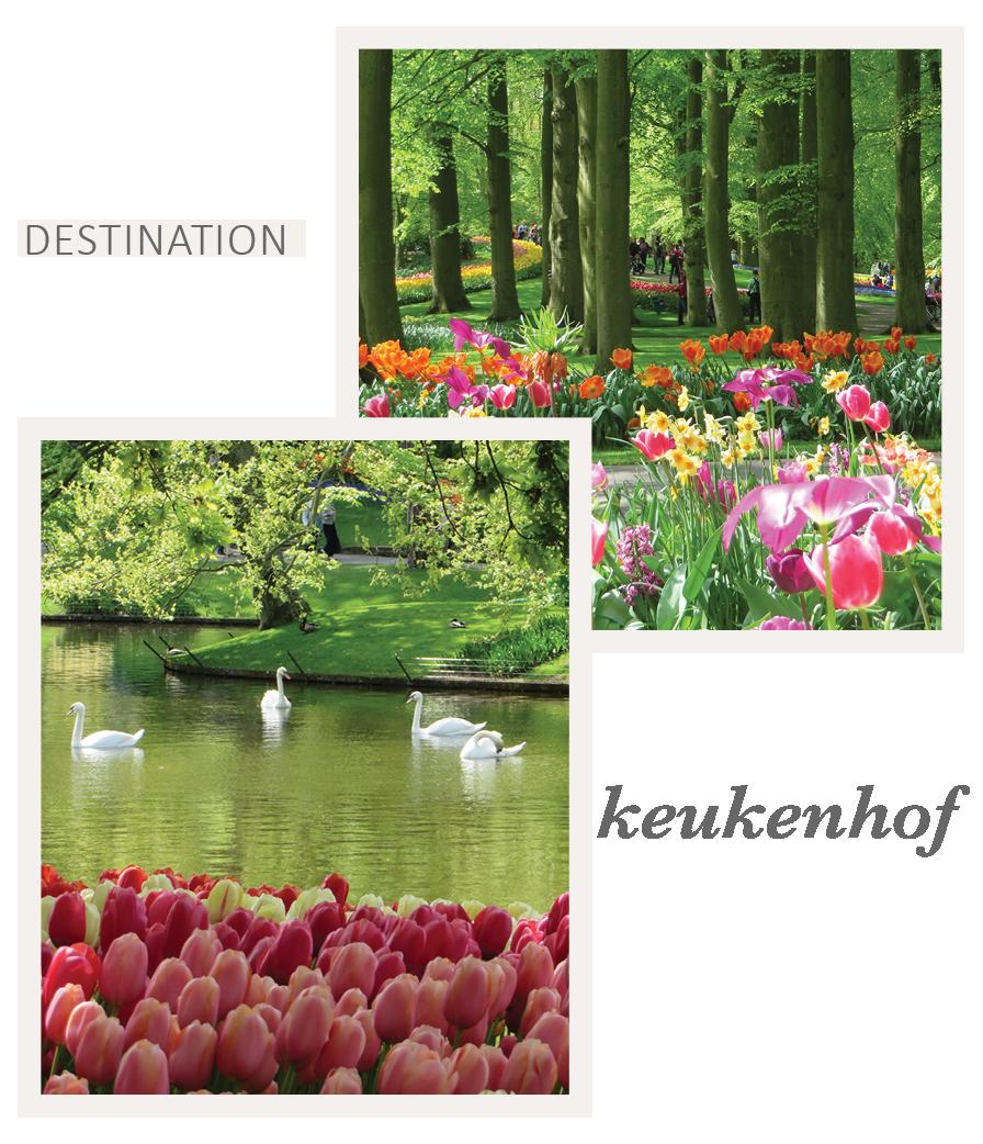 Travel to Keukenhof Gardens with Eileen Schlichting of Transatlantic Travel