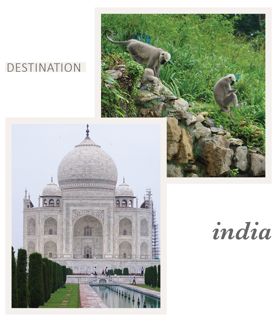 Travel to India with Eileen Schlichting of Transatlantic Travel
