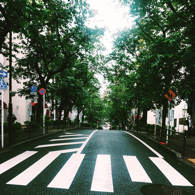 The street I called home for the month of May. #tokyo #japan