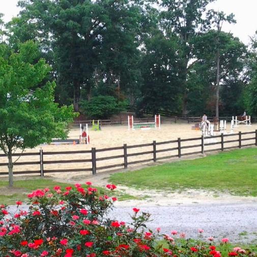 Trinity Equestrian