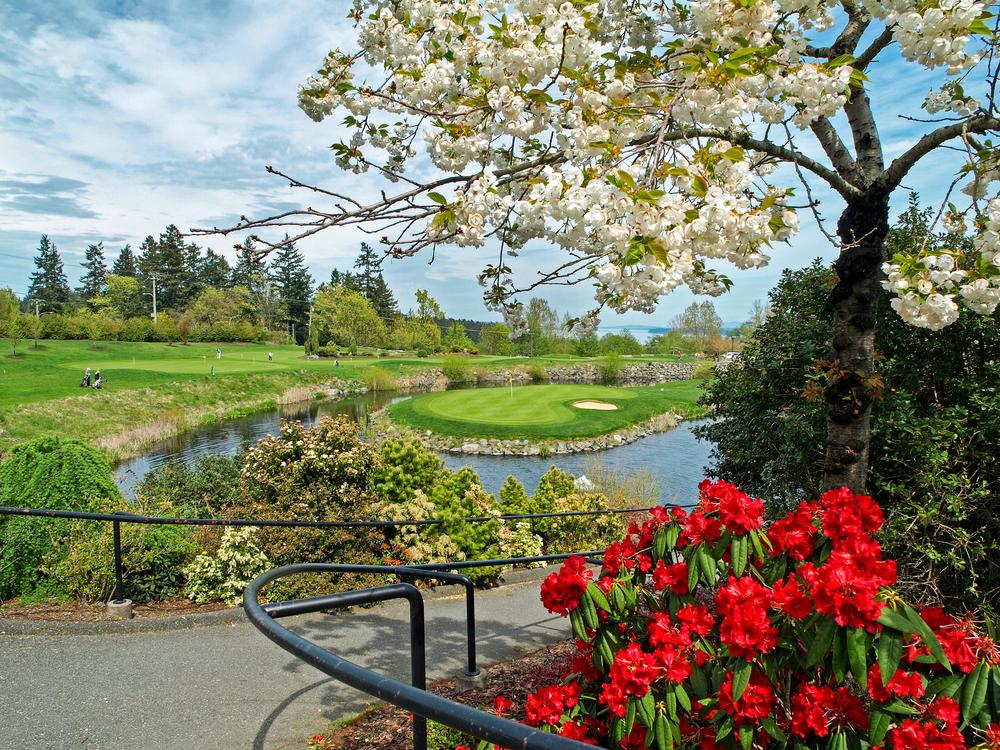SaywardHill Golf Course