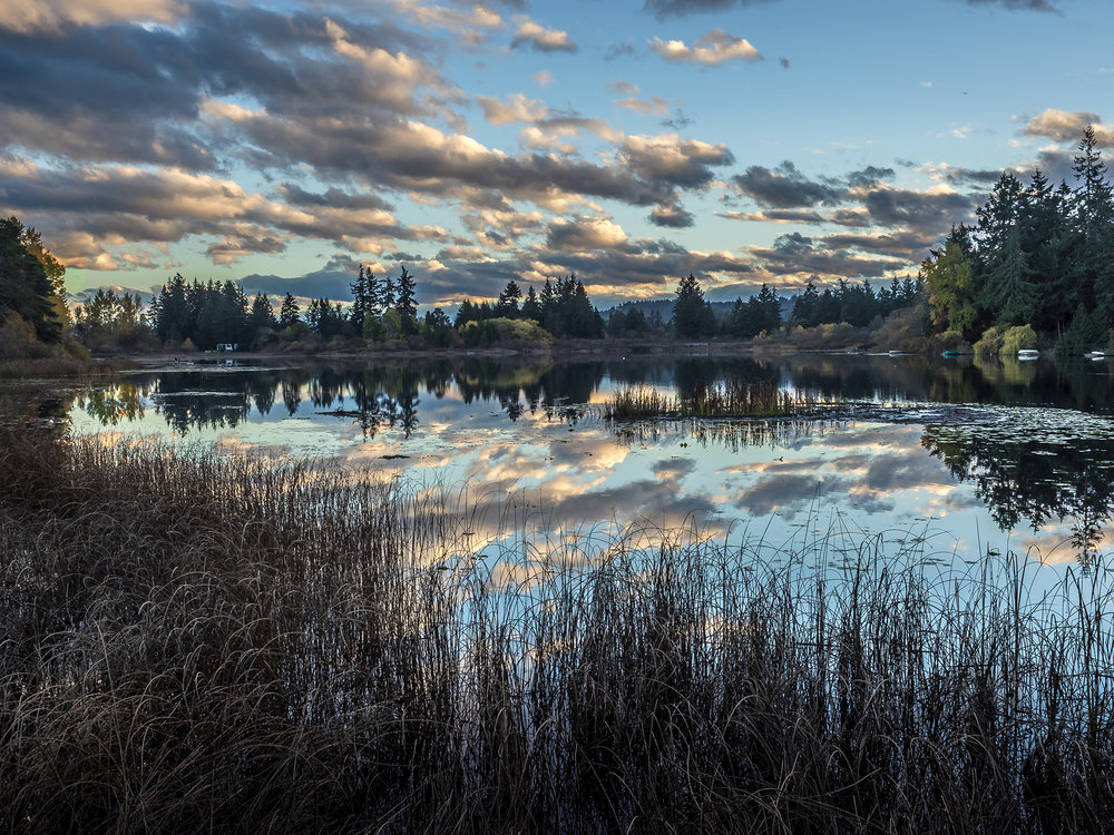Florence Lake Reflections
