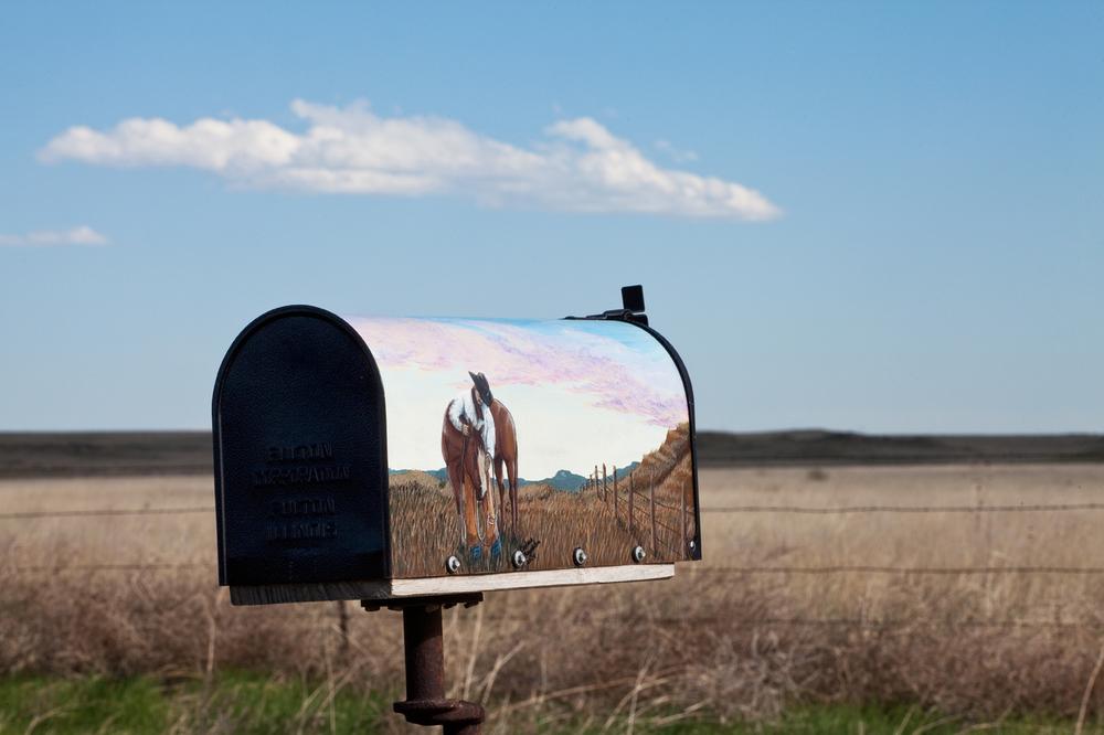Mailbox, tumbleweeds. Pawnee National Grassland.