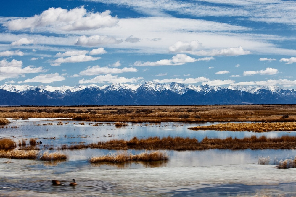 The Sangre de Cristo mountains behind flooded fields.