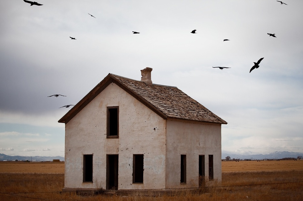 Crows circling an abandoned house near Crestone, CO